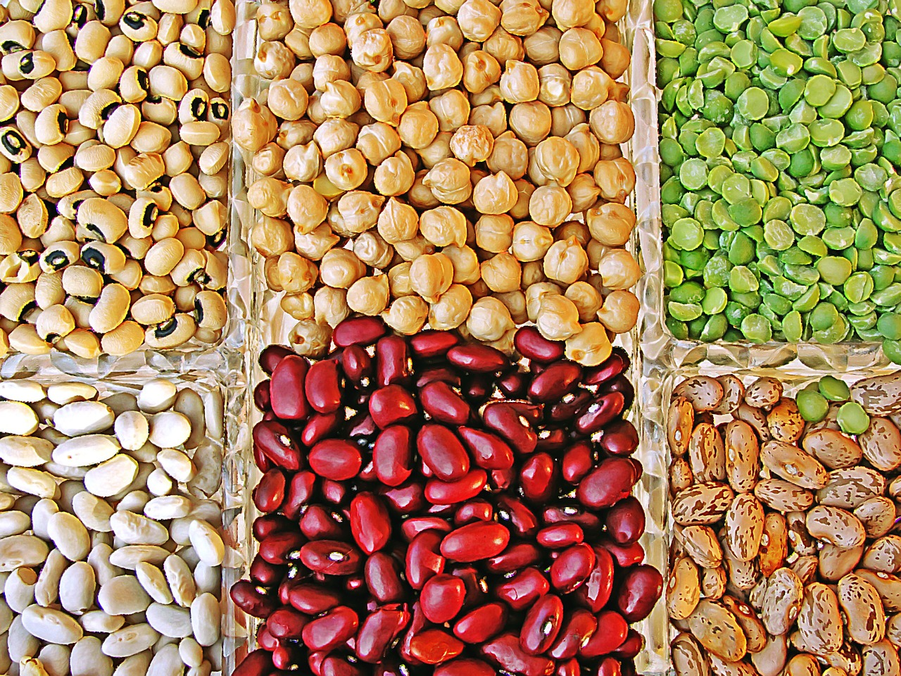 Vegetarian Power: Good Plant-Based Sources of Protein